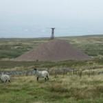Top pylon - Silverband