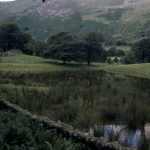 Lint Dam, Patterdale - retting pond, 1998 (49-66)