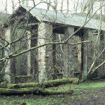 Caldbeck Howk, 1982 - timber seasoning shed (23-157)