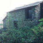 Cunsey, 1990 - drying kiln (120-258