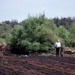 Peat digging (149-035)
