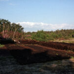 Peat diggings (149-039)
