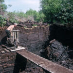 The peat bank (149-049)
